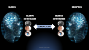 Los sistemas representacionales en la PNL: Tipos de personas y filtros sensoriales